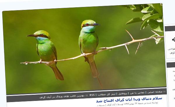 قالب زیبای پرنده