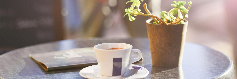 قالب وبلاگ یک فنجان قهوه , گلدان, قهوه, قالب وبلاگ فنجان قهوه, قالب وبلاگ آرامش بخش, قالب قهوه بلاگفا, فنجان, رمانتیک