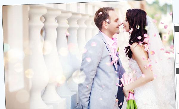 قالب زیبای عروس و داماد