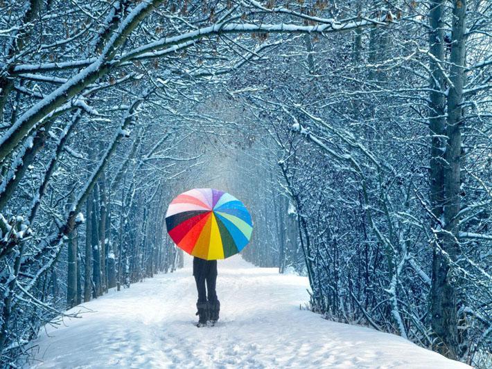 قالب برف و زمستان , میهن بلاگ, قالب درباره برف و زمستان, قالب برف و زمستان میهن بلاگ, قالب برف و زمستان پرشین بلاگ, قالب برف و زمستان بلاگفا, قالب برف و زمستان, قالب با موضوع برف و زمستان, زن, زمستان, درخت, دختر, چتر, پرشین بلاگ, بلاگفا, برف