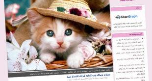 قالب گربه ملوس , ناز, گربه, قالب گربه ملوس میهن بلاگ, قالب گربه ملوس بلاگفا, قالب گربه ملوس, قالب درباره گربه ملوس, قالب با موضوع گربه ملوس, ق الب گربه ملوس پرشین بلاگپ, صورتی, زیبا, دختر