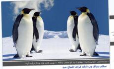 قالب زیبای بچه پنگوئن , کد قالب پنگوئن, قالب وبلاگ پنگوئن, قالب کارتونی پنگوئن, قالب زیبای پنگوئن, قالب پنگوئن برای بلاگفا, قالب پنگوئن, قالب بچه پنگوئن, پنگوئن
