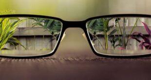 قالب وبلاگ عینک , قالب وبلاگ عینک, قالب منظره از پشت شیشه عینک, قالب عینک بلاگفا, عینک, درخت