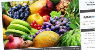 قالب میوه , میوه, قالب میوه میهن بلاگ, قالب میوه پرشین بلاگ, قالب میوه بلاگفا, قالب میوه, قالب درباره میوه, قالب با موضوع میوه, خوراک